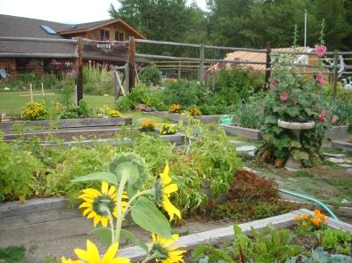 Nola's Garden 8-08 062