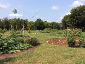 Tranquility abound at one of our community gardens in #Lexington. Growing and eating bridges gaps and mends fences