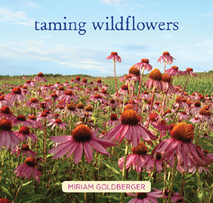 TamingWildflowersCover