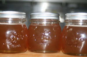 honeyjars