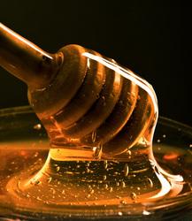 HoneySpreader