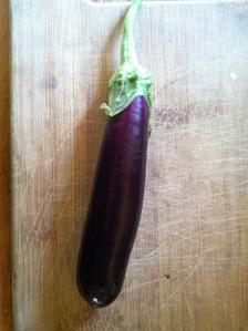 eggplant grafting tomatoes