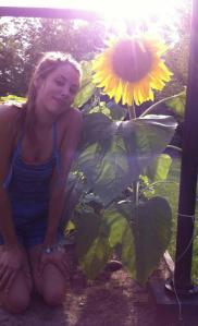 Tesssunflowers