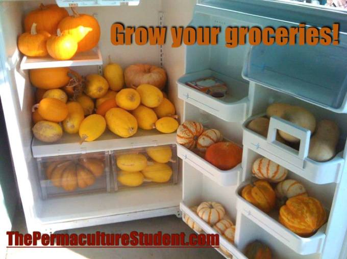 GrowYourGroceries