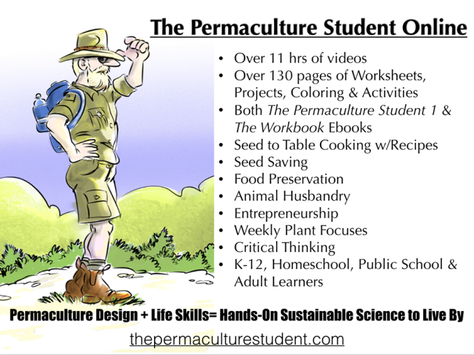 132  The Permaculture Student Online | Matt Powers | California