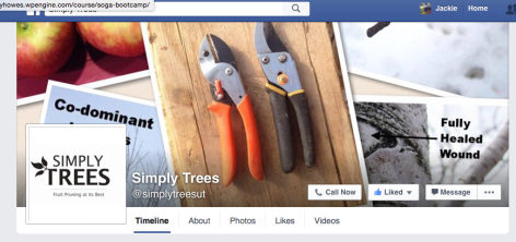Simply Trees Facebook Page fruit tree pruning