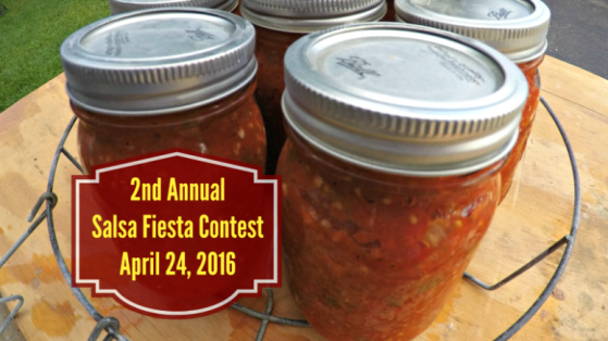 Small scale life salsa fiesta contest 2016