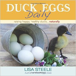 Duck Eggs Daily from Fresh Eggs Daily Lisa Steele