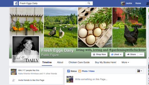 fresh eggs daily facebook page