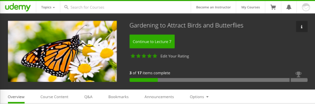 Gardening To Attract Birds and Butterflies Udemy Ecourse