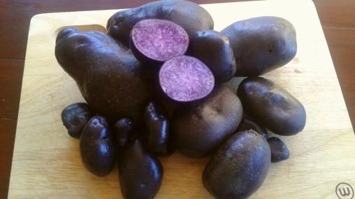 purple heritage potatoes seaveiw cottage