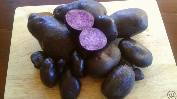 purple heritage potatoes seaveiw cottage