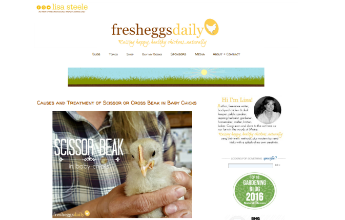 fresh eggs daily blog Lisa Steele Website