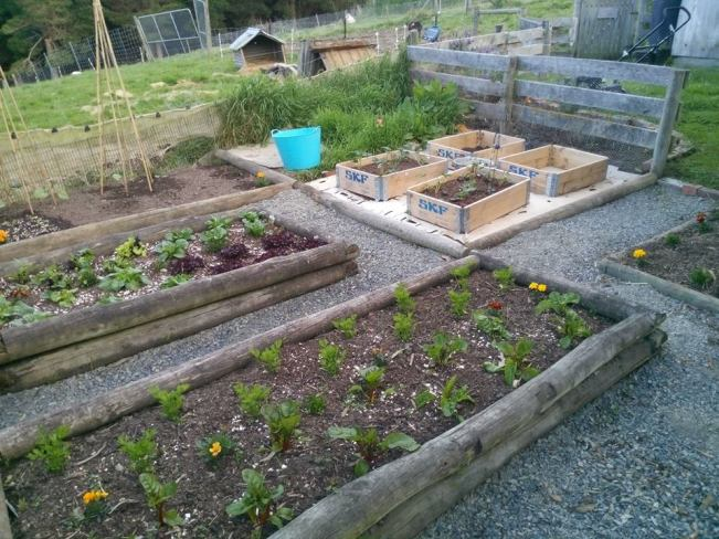 Seaview Cottage Raised Beds