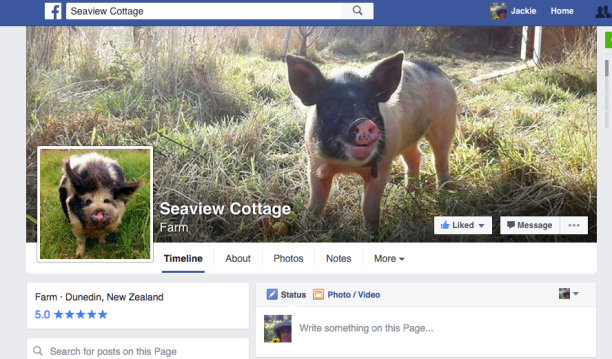 Seaview Cottage FB Page