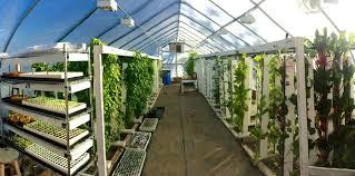 Upstart University Vertical Garden