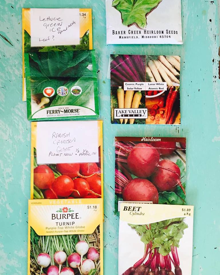 New Seeds to plant
