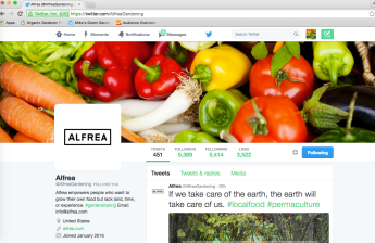 Alfrea Twitter Page