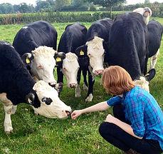 Elizabeth Kucinich with Cows