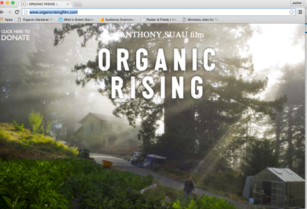 Organic Rising Film SS