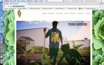 Team Gardens Website