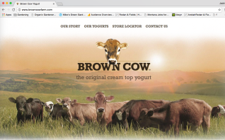 Brown Cow Yogurt Website