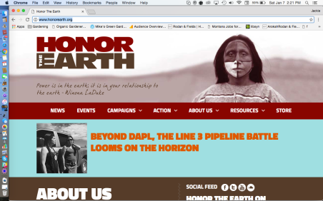 Honor The Earth Website