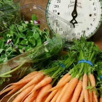 Flathead Farmworks Carrots and herbs