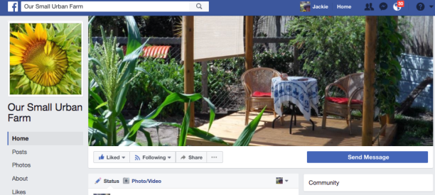 Our Small Urban Farm FB Page