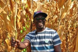 Kofi Boa Ghana Africa No Till Farming