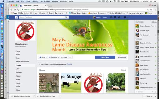 Deerbusters Facebook Page