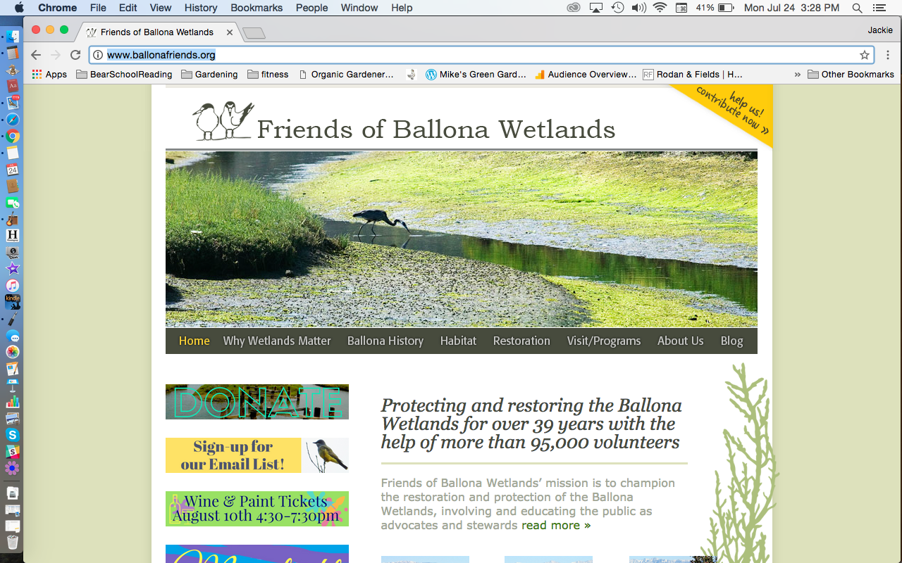 BallonaWetlands.png