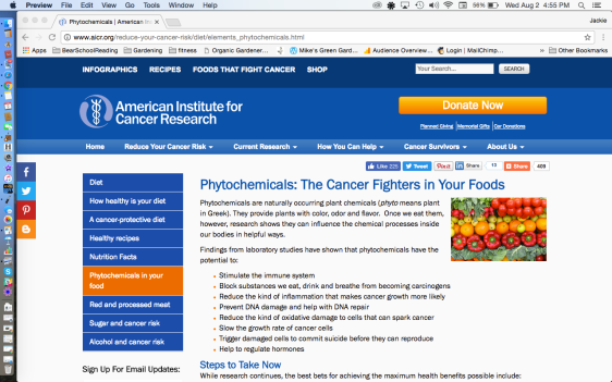 American Institute for Cancer Research Website
