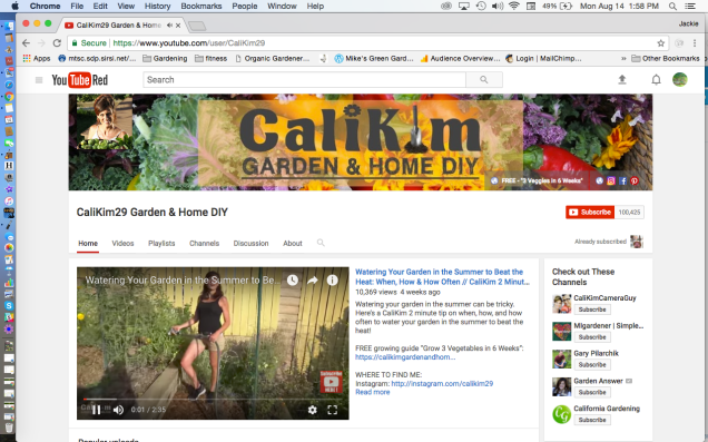Cali Kim Garden and Home DIY You Tube