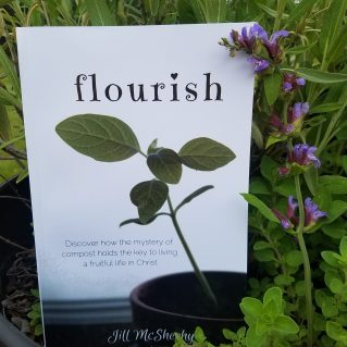 Flourish by Journey with Jill McSheahy