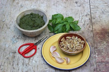 Pesto Basil, Garlic and Walnuts By Megan Cain