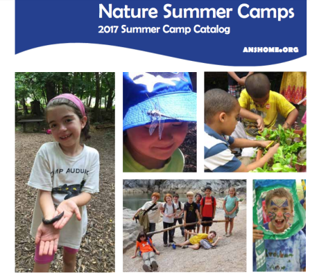 Audubon Nature Summer Camps