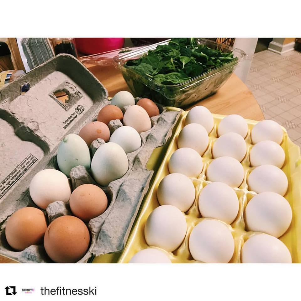 Whipporwill Farms SC egg harvest