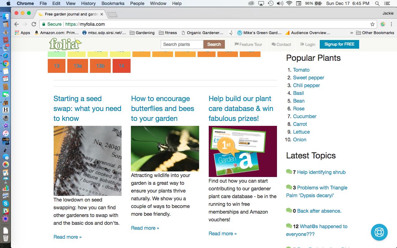 My Folia Website