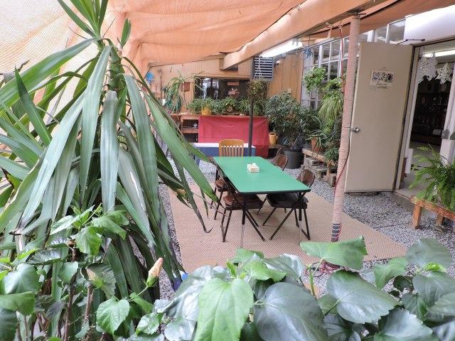 Asa Adams Greenhouse 6.jpg