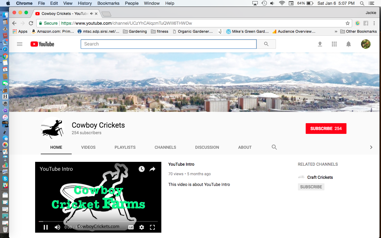 Cowboy Crickets Farm YouTube Page