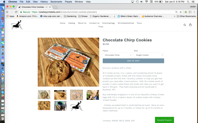 Cowboy Crickets Chocolate Chirp Cookies