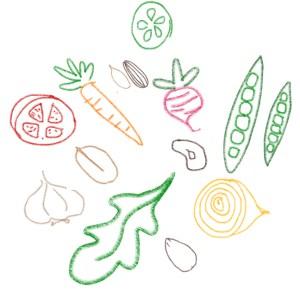 veggie_harvest.jpg