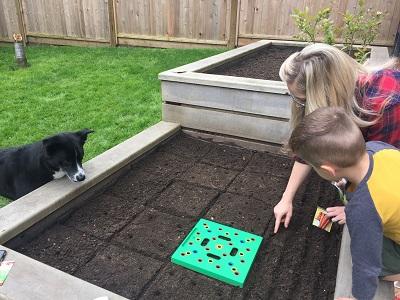 SeedingSquareInGarden.jpg