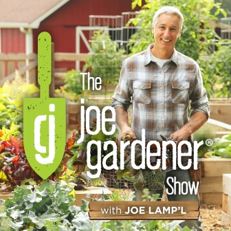 Joe Gardener Show Joe Lamp'l