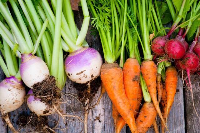 Garden Maker Naturals Veggies