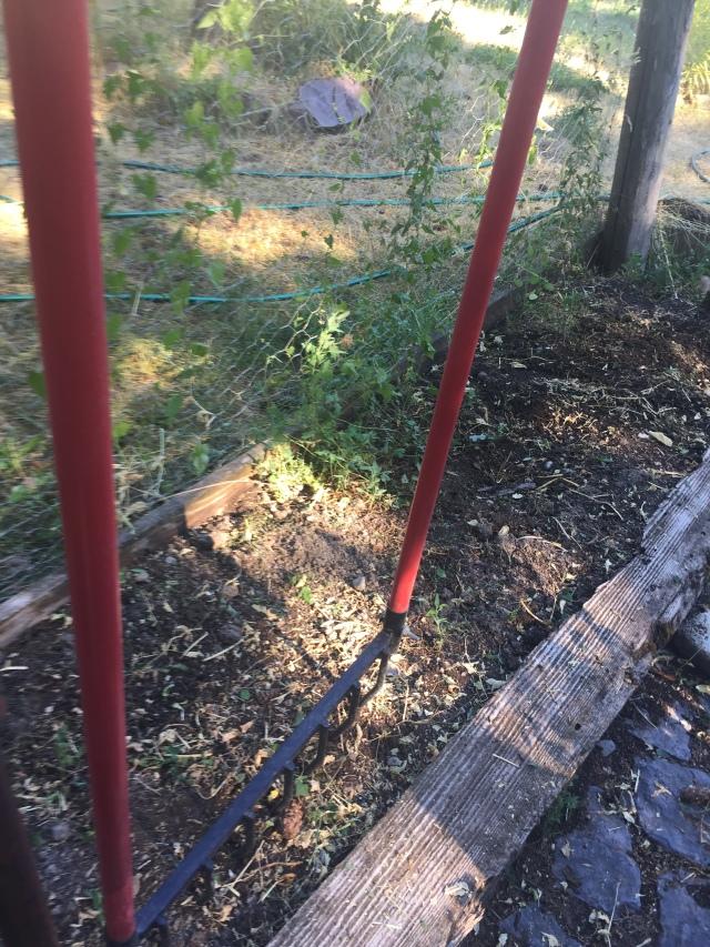 braodfork garden tool