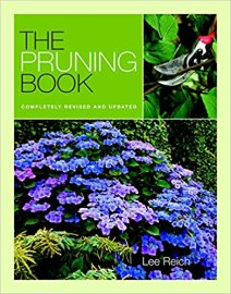 PruningBook