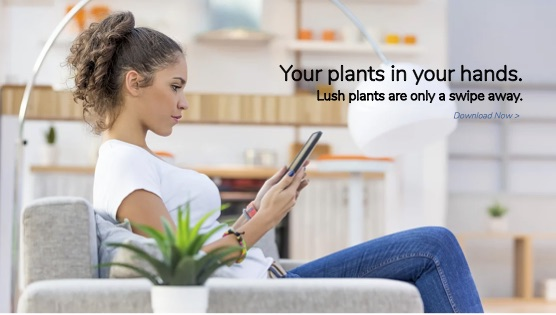 Smart Plant App Swipe photo