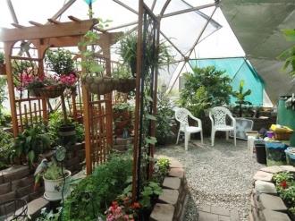 008-backyard-greenhouse-33-kleobold.jpg-nggid018-ngg0dyn-330x247x100-00f0w010c011r110f110r010t010.jpg